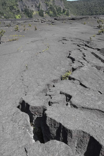 A crack in a lava rock surface.