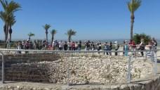 Megiddo 12
