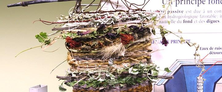 Atelier tissage végétal