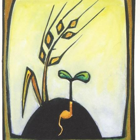 Lent wheat