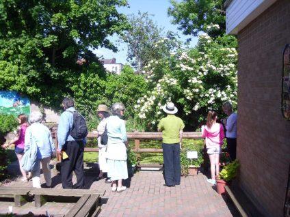 Open Gardens 2015 18