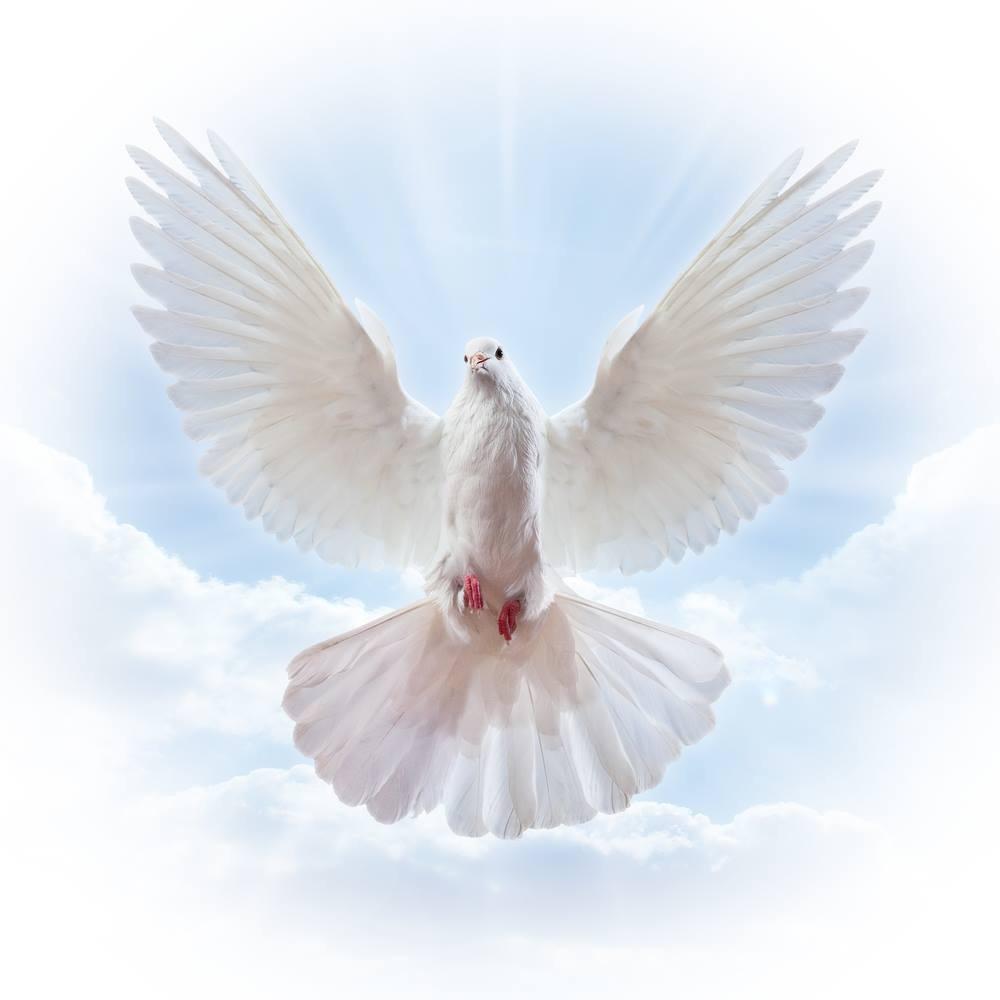 learn to pray holy spirit