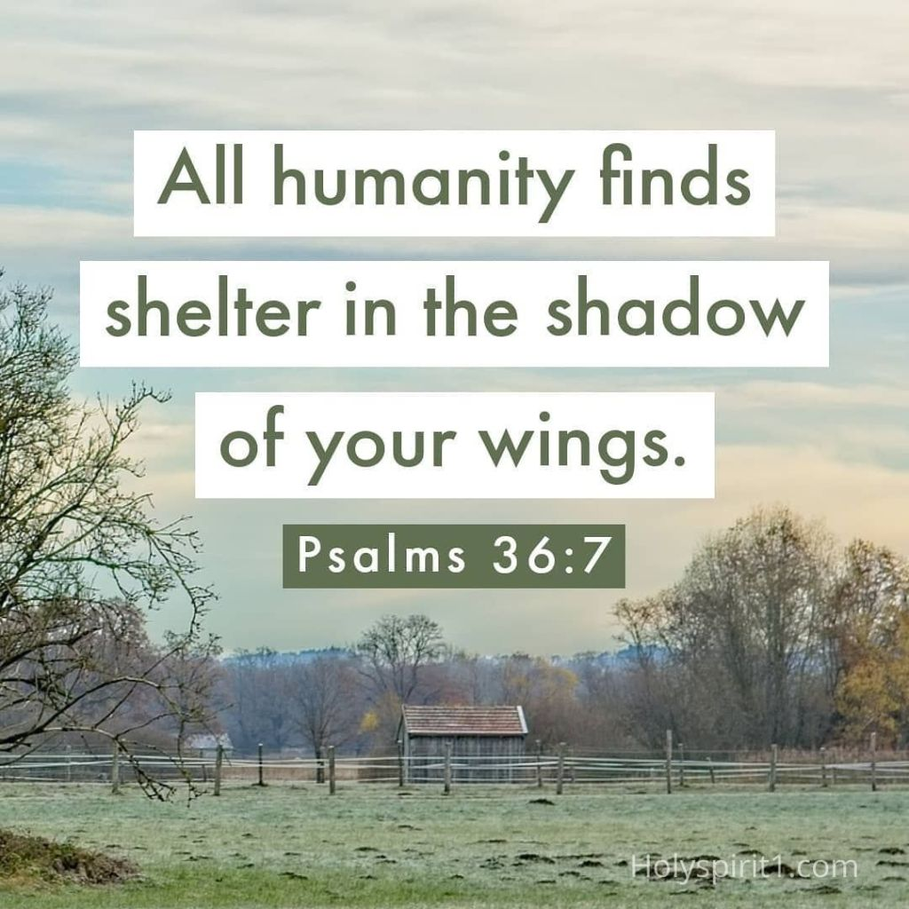 Scriptures with images - Psalms 36-7 NLT,   english bible verses images, bible verse images, bible verses images, bible words in english images, pictures of bible verses, scriptures with pictures, bible verses with pictures, bible verses pictures, scripture images,