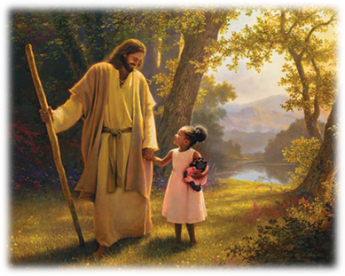 6th Sunday Ordinary Time: Trust in the Goodness of God