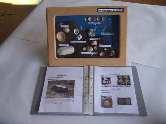 Science Collection (3)