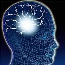 Energy Stress Neuro Psycho