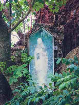 Statue of the BVM in the tree