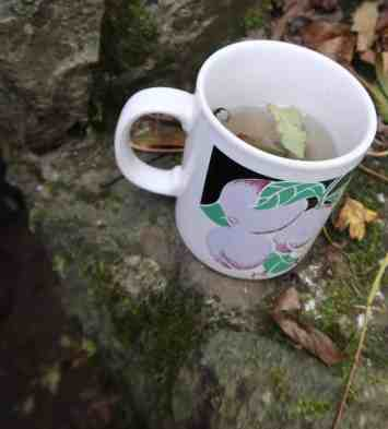Cup, filled with rainwater