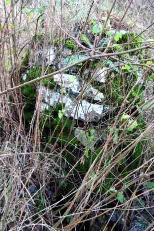 Part of limestone well