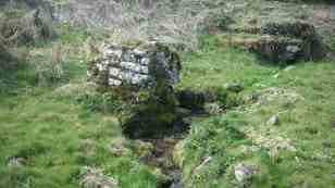 St Dominic's well