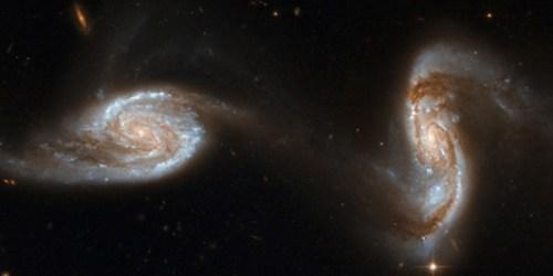 guerra galaxias A Burgos hombre de palo 05