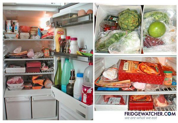 fridgewatcher_0116