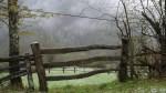 La belleza de la valla