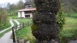 Casa rural Los Riegos, escondida detrás de un arbol