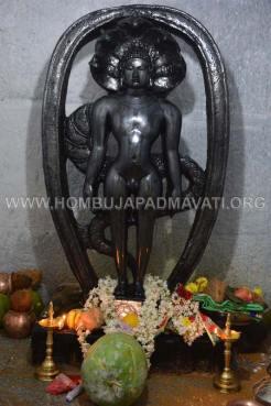 Sri-Kshetra-Hombuja-Kundadri-Jain-Temple-Dhamasamprokshane-0032