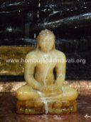 Hombuja-Humcha-Jain-Math-Mahavir-Mahaveer-Jayanthi-Janmakalyana-2018-0012