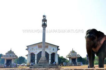 Acharya-Vardhamansagarji-Maharaj-Guddada-Basadi-Hombuja-Jain-Temple-Mastakabhisheka-0006