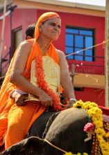 Shruta-Bhakti-Mahotsava-2019-Hombuja-Humcha-Jain-Math-0011