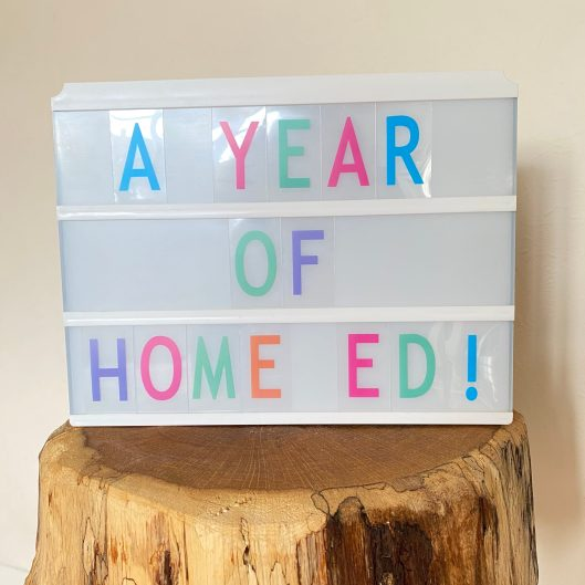 Our First Year of Home Education | The Home Education Diaries