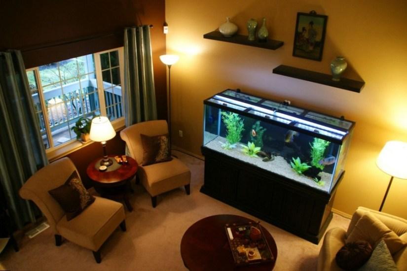 аквариум в интерьере маленькой квартиры