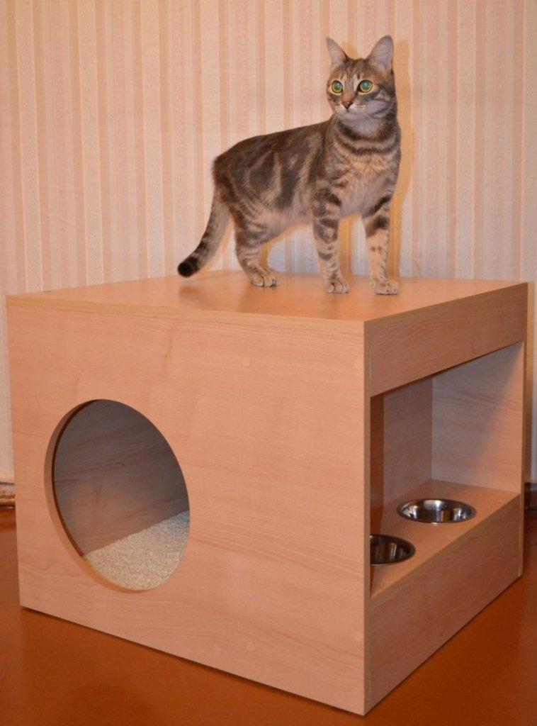 домик для кошечки поилками