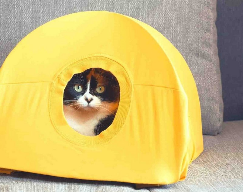 как сделать домик для котенка с футболки