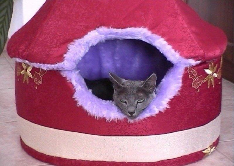 новогодний дом для кошки