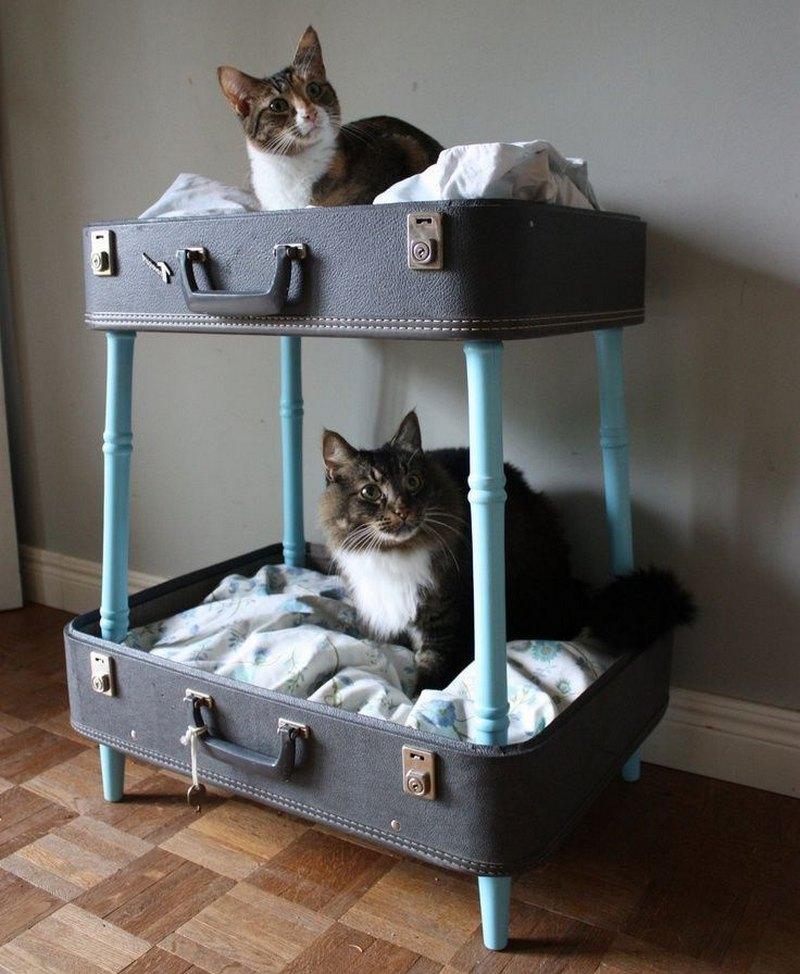 домик для котов из чемоданов