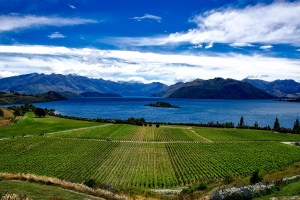 ニュージーランドーワナカ湖