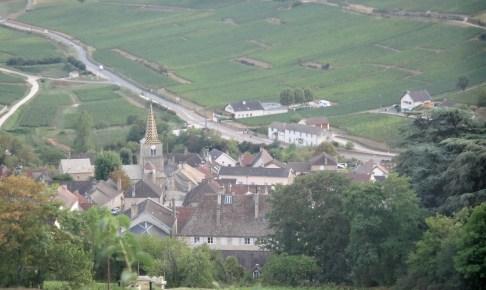 コルトン-シャルルマーニュcorton-charlemagne