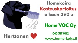 Hinta Homekoira Herttanen hoitaa homeesi kosteuskartoitus Home VOC