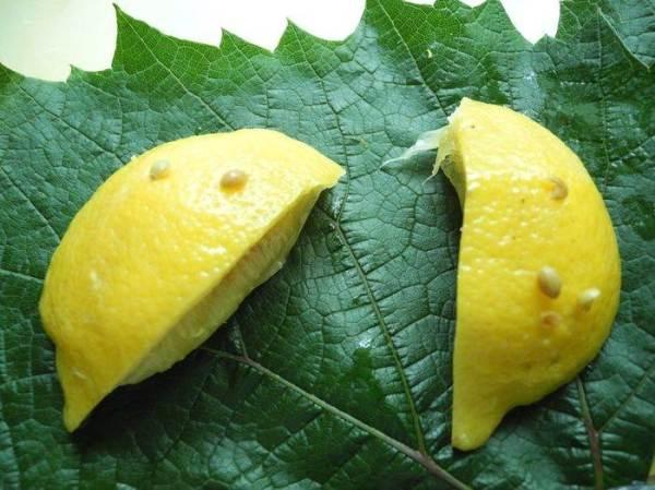 Радужная форель с солеными лимонами, запеченная в ...