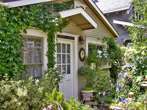 дача растения вьющиеся вход в дом
