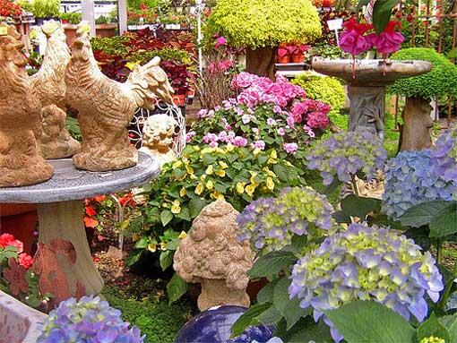 ландшафтный дизайн декорирование дачи цветы в горшках