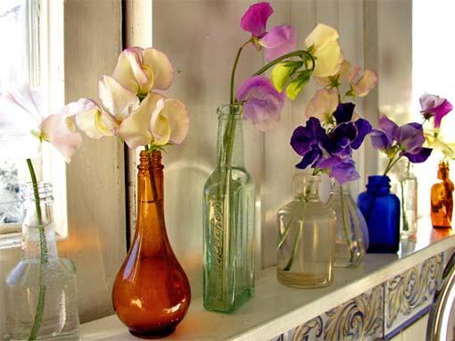 живые цветы в бутылках