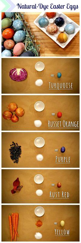 Окраска пасхальных яиц натуральными цветами - луковая шелуха, черника, капуста