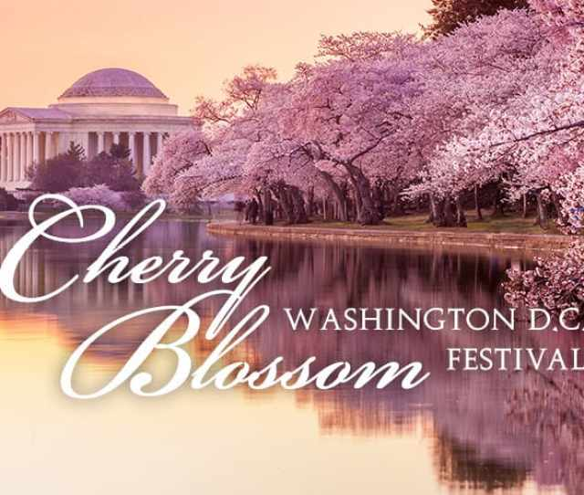 Itinerary Package Extensions Washington D C Cherry Blossom Festival