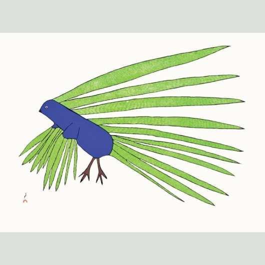 Kakulu Saggiaktok Green Feathers