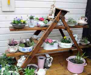 best ladder shelves and bookcase shelves for home, garden, indoor and outdoor