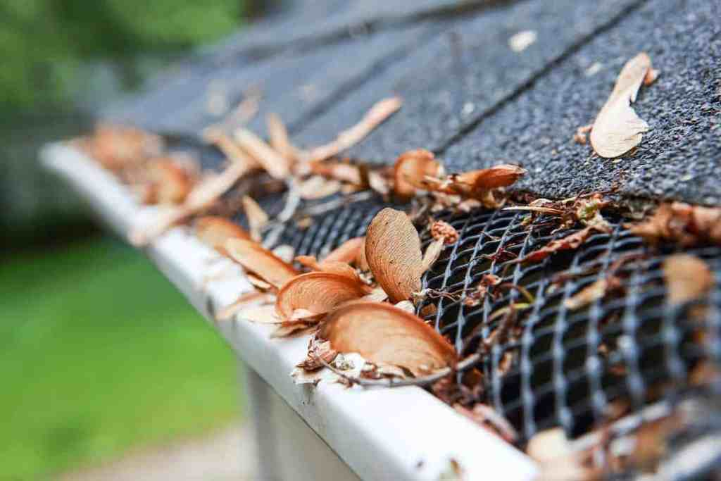 Best gutter guards and best leaf guards