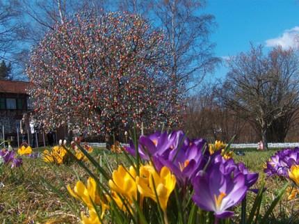 The Volker Easter Egg Tree