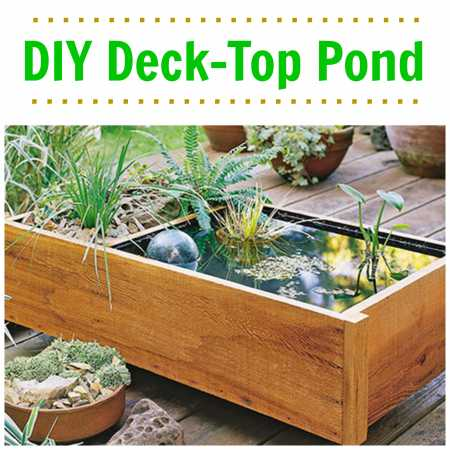 Easy tutorial to build a beautiful deck top pond home for Cheap backyard pond ideas