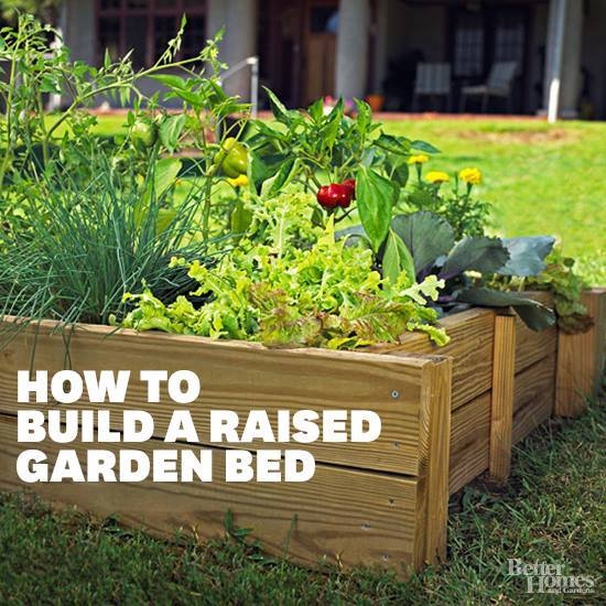Perfectly Detailed Plans To Build Your Own Raised Garden