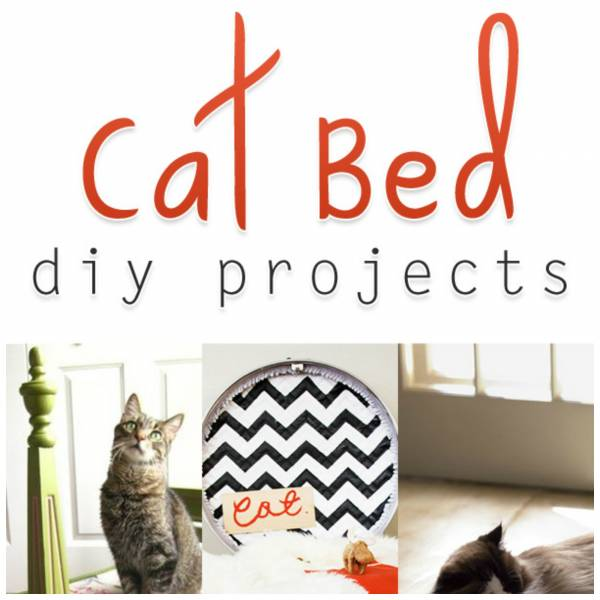 Cat bed projects you can make yourself home and garden do you have a special little kitty in your home that you feel deserves their own special spot to rest their head check out this post from the cottage solutioingenieria Gallery