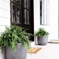 DIY Faux Concrete Pot Planters