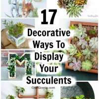 17 Succulent Planters You Can DIY