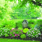 Getting To Know Shade Tolerant Plants Home Garden Nj