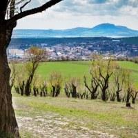 Léto v Česku: Pohoda na Pálavě