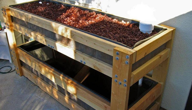 Aquaponics Plans For Your Own Home