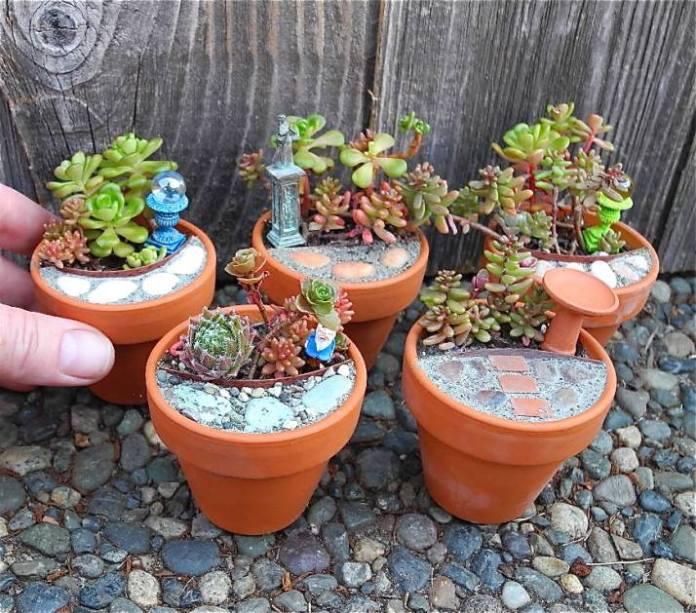 Fairy Garden Ideas: A real mini garden diy mini